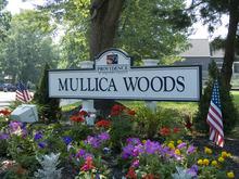 Photo Of Mullica Woods