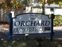 Photo Of The Orchard